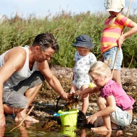 Take the children on a free expedition trip at the beaches of island Als